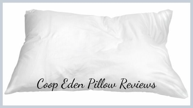 Coop Eden Pillow Reviews