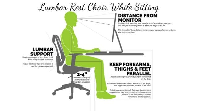 Lumbar Rest Chair While Sitting