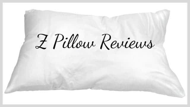 Z Pillow Reviews